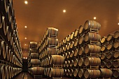 Weingut Guado al Tasso, Bolgheri, Toskana, Italien