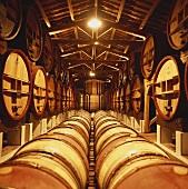 Weinkeller vom Chateau de Beaucastel, Chateauneuf-du-Pape