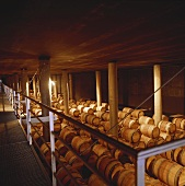 Wine cellar of Hacienda Monasterio, Ribera del Duero, Spain
