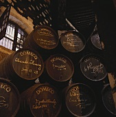 Wine barrels, Bodega Domecq, Jerez, Spain