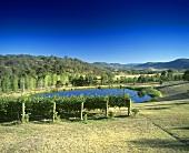 TarraWarra Estate, Yarra Valley, Victoria, Australia