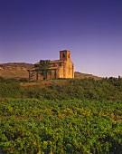 Santa Maria de la Piscina, Peciña, Rioja Alta, Spanien