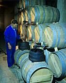 Transferring wine, Bodegas Muga, Haro, Rioja Alta, Spain