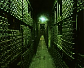 Cellar of Marqués de Riscal, Elciego, Rioja Alavesa, Spain