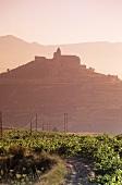 San Vicente de la Sonsierra, Rioja Alta, Rioja, Spain