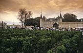 Medoc Marathon with Chateau Pichon Longueville Baron, Pauillac