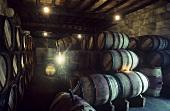Wine cellar of Château Figeac, St. Emilion, Bordeux