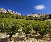 Coteaux du Languedoc wine-growing region with La Clape massif, FR