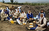Meal break during grape harvest in Macedonia