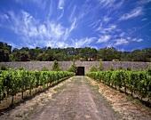 Quintessa Winery, Rutherford, Napa Valley, California