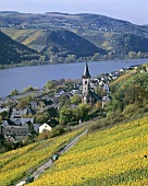 View of Lorch, Rheingau, Germany