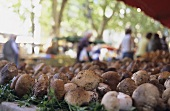 Fresh ceps on a market stall, Arles, Provence, France
