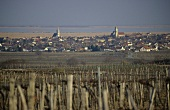 The wine town of Rust, Lake Neusiedl, Burgenland, Austria