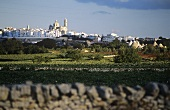 The white town of Locorotondo, Valle Itri, Apulia, Italy