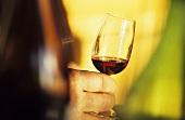Glass of red wine in winemaker's hand, wine cellar, Zürich, CH
