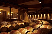 Barrique cellar of the Opus One Winery, California, USA