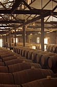 Historic barrique chai, Yalumba Winery, Barossa Valley, Australia