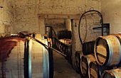 Wine cellar of Château le Pin, Pomerol, Bordeaux, France