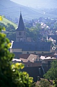 View of the wine village of Randersacker, Franconia, Germany