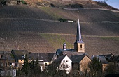 'Graacher Domprobst' Einzellage, Graach, Mosel, Germany