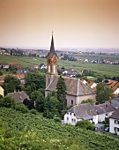 Vine village of Haardt, Palatinate, Germany