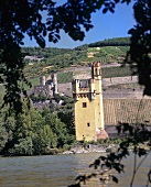 'Mouse Tower', Bingen, Ehrenfels ruins in background, Rheingau, Germany