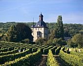 Schloss Vollrads, Winkel, Rheingau, Germany