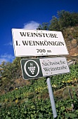 Signpost on Saxon wine route, Saxony, Germany