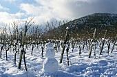 Schneemann vor einem Weinberg, Pfalz
