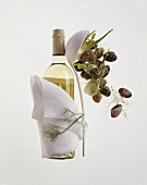 White wine to serve with shellfish