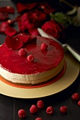 A raspberry cheesecake made by Pierre Herme (French confectioner)