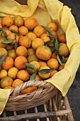 Mandarins from Beirut in a basket