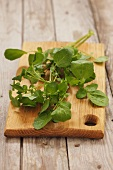 Cress on a wooden board