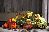 Various types of pumpkin on a wooden table