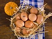 Fresh organic eggs in a wire basket