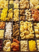 A seedling tray filled with various types of pasta
