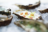 Marinated Royal Oysters from Sylt