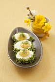 Eggs coated in cress