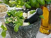 Pesto ingredients in mortar: basil, pine nuts, Parmesan cheese