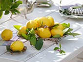 Lemons in silver dish on wooden table
