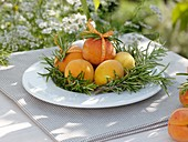 Apricots with rosemary sprigs on plate