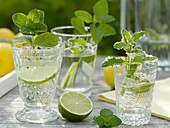 Mineral water with lime and herbs