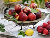 Nectarines and red plums in old silver dishes