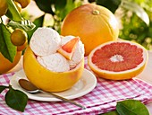 Pink grapefruit ice cream in hollowed-out grapefruit shell