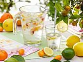 Eiswürfel mit Zitrusfruchtstückchen im Wasserkrug