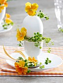 Boiled egg decorated with horned violets and lemon thyme