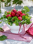 Radishes and parsley in soup bowl (table decoration)