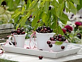 Sweet cherries on garden table