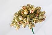 Blumenstrauss mit Samenkapseln von Nigella