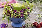 Kerzenkranz mit Astern, Hortensie und Clematisranke in emailliertem Küchensieb